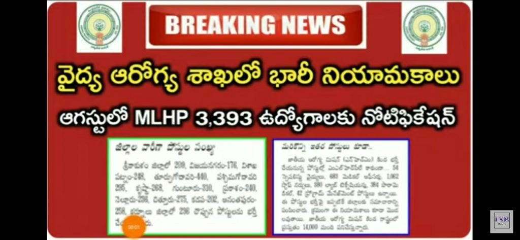 Ap mlhp notification district wise vacancy
